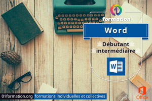 01Formation : formation Microsoft Word niveau débutant et intermédiaire
