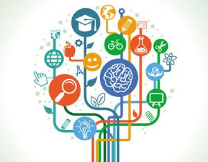 Image d'un arbre de compétences symbolisant le caractère multidisciplinaire des formations 01formation