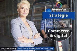 Image illustrant les formations stratégie commerciale digitale par 01formation.org