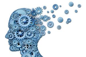 sciences humaines un mécanisme complexe